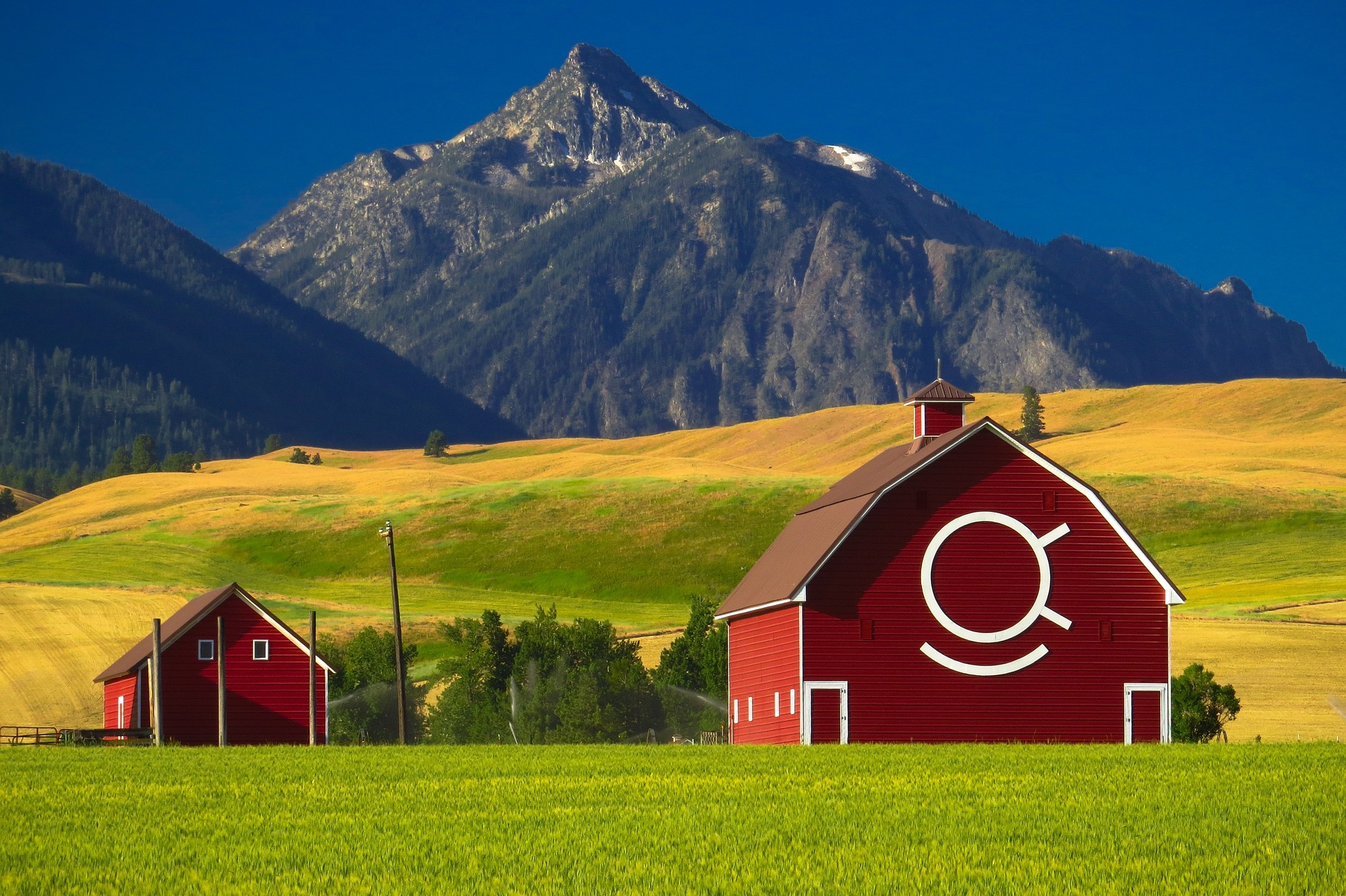 5 reasons to start business in rural