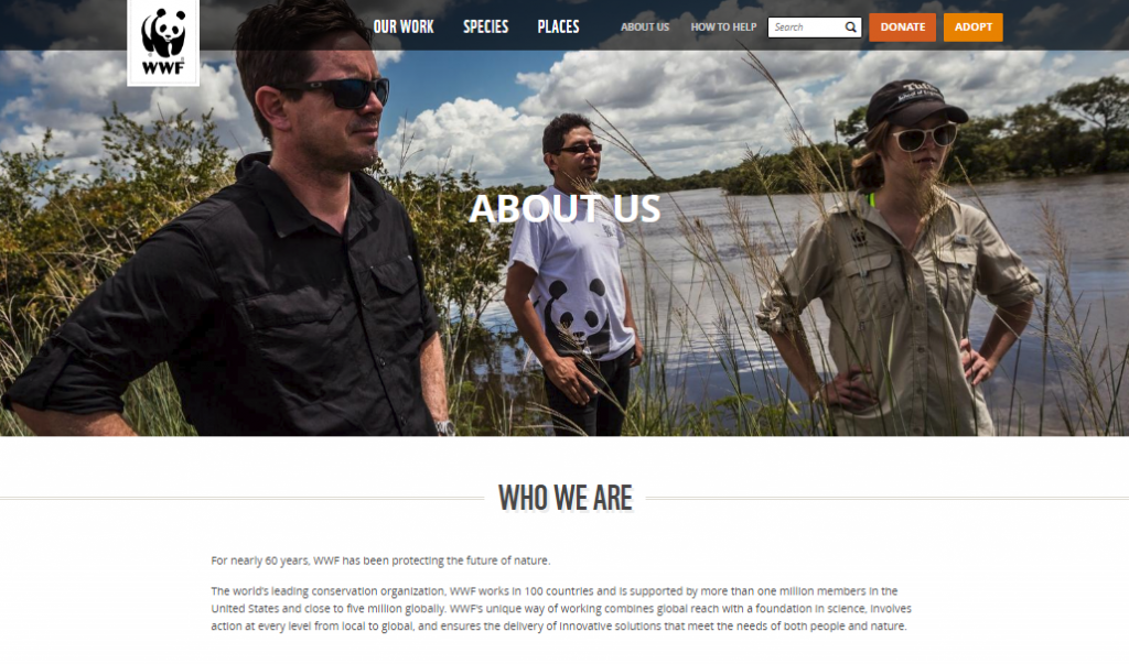 aboutus page information ideaaboutus page information idea