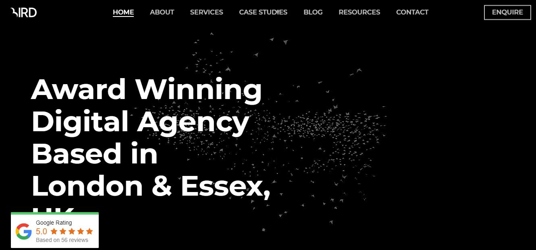 Bird Marketing Seo Agency