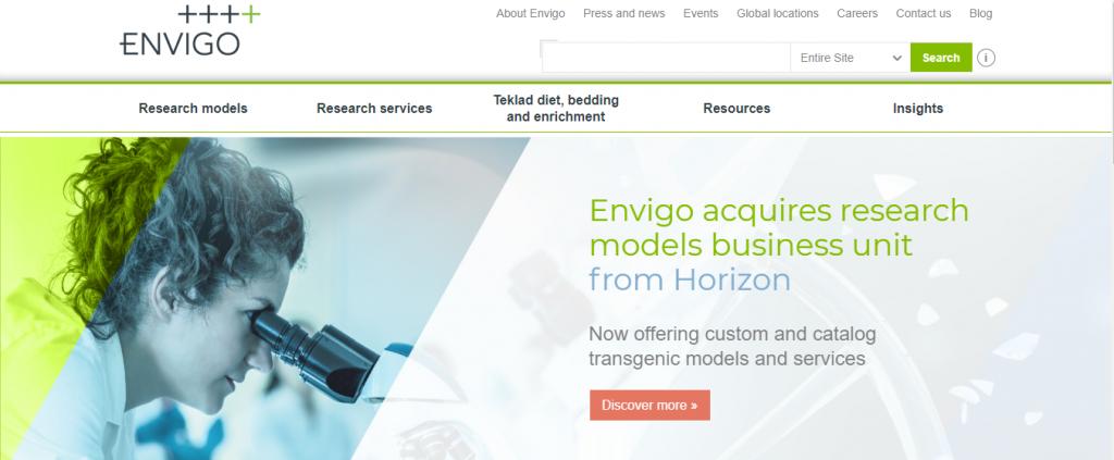 Envigo Seo agency