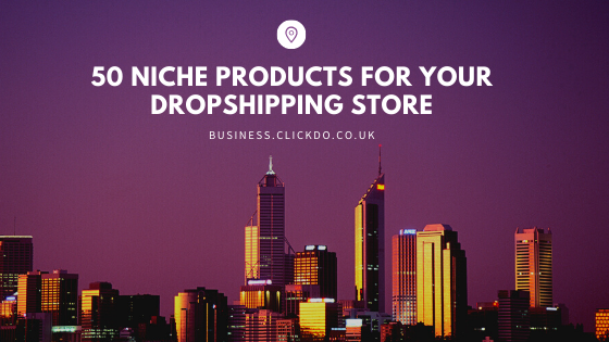 niche products for drop shipping store