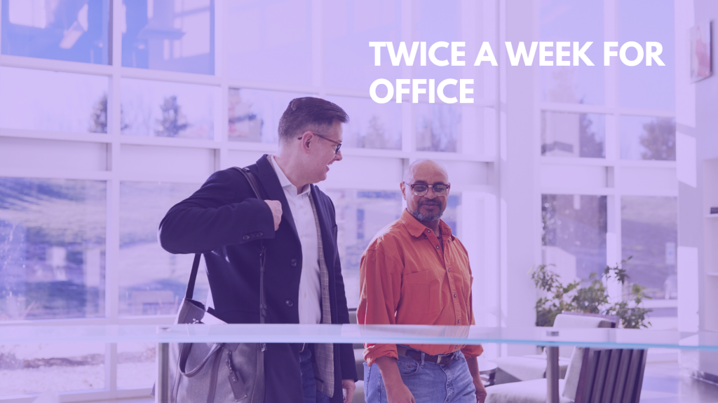 twice a week for Office