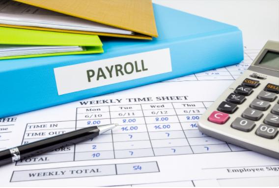 payroll managing software