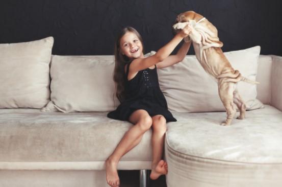 Top TikTok Ideas With A DogTop TikTok Ideas With A Dog