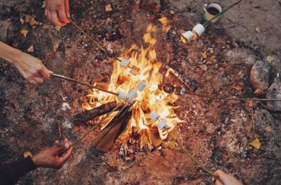 Camping Food safety tipsCamping Food safety tips