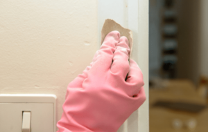Paint Removal Services in London