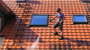 Why to Hire Roof Cleaning Professionals